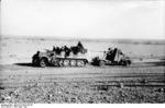 German Army SdKfz. 7 half-track vehicle towing a 8.8 cm FlaK gun in North Africa, Apr 1941