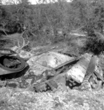 Destroyed German Tiger II heavy tank near Vimoutiers, France, 22 Aug 1944