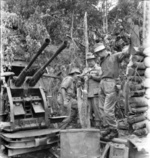 General Thomas Blamey and Brigadier David Whitehead inspecting a captured Japanese Type 96 25mm anti-aircraft gun, Essex Ridge, Tarakan Island, Borneo, 8 May 1945