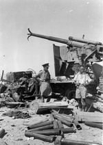 New Zealand Brigadier Howard Kippenberger and Captain Allan McPhail inspecting a destroyed Cannone da 90/53 anti-aircraft gun formerly of the Italian Ariete Division, North Africa, 4 Jul 1942 or shortly after